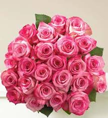 36 pink roses in a bouquet