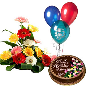 Gerberas With 2 Pound Chocolate Cake And 3 Balloons