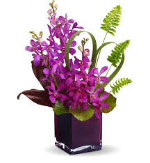 Exotic orchid arrangement