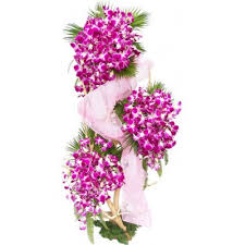 Orchids Stand