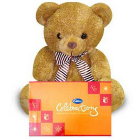 6 inch teddy with celebration combo