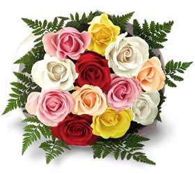 Bouquet of 24 mixed roses.
