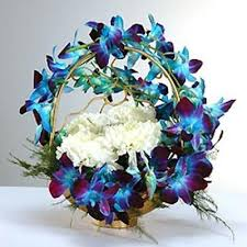 Orchids Bouquet