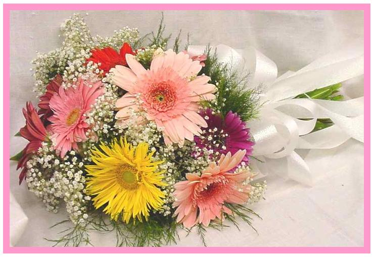 12 Gerberas in a bouquet.
