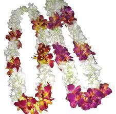 orchids-garland