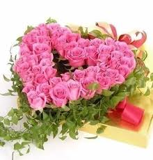 24 pink roses heart