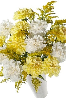 12 yellow carnations.
