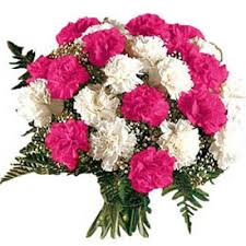 Pink white carnations bouquet