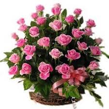 54 Pink roses in a basket
