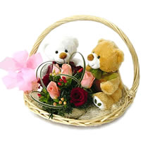 2 soft toys with 6 roses