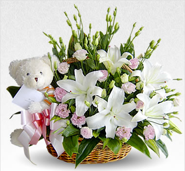 Lilies and Teddy in a basket