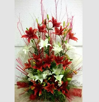 2 Feet arrangement of White  and Ornge Lilies