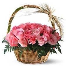 50 pink roses in a basket